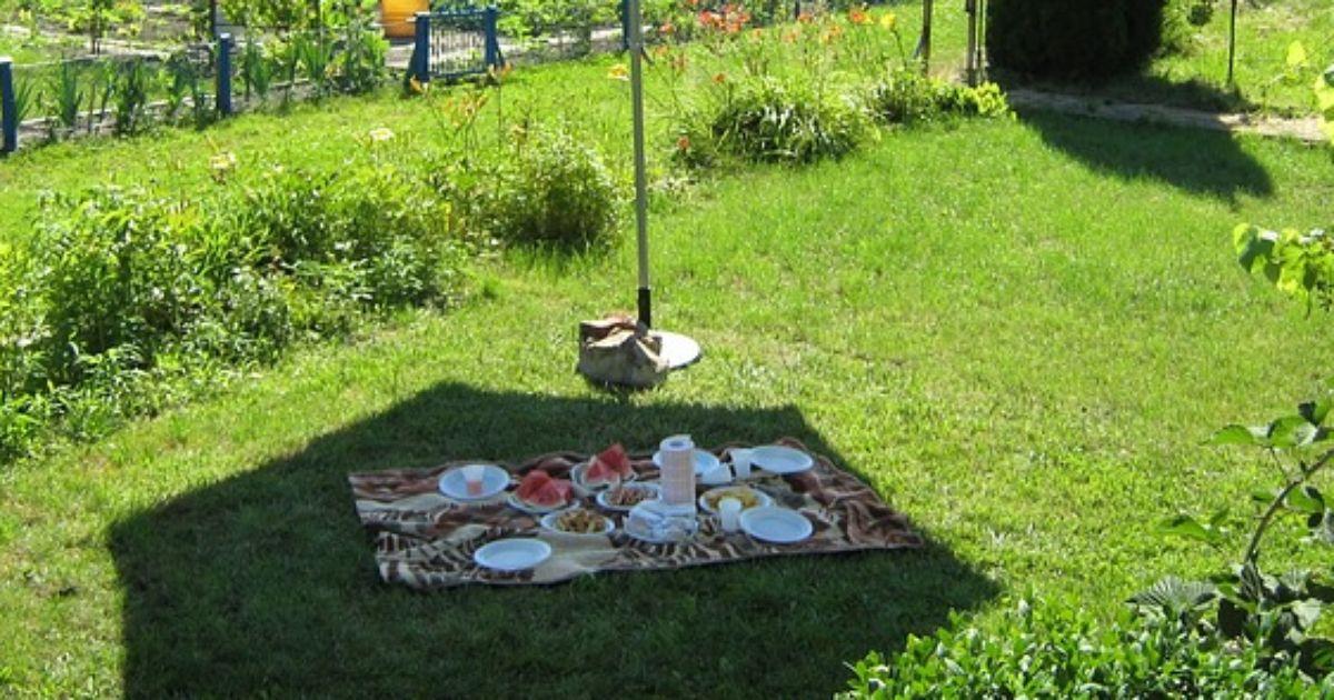 das perfekte picknick diese dinge d rfen nicht fehlen. Black Bedroom Furniture Sets. Home Design Ideas